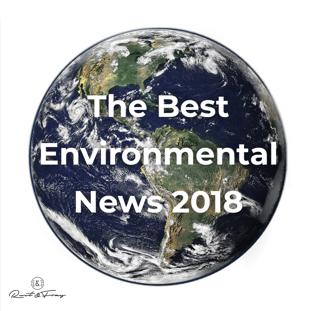 The Best Environmental News 2018