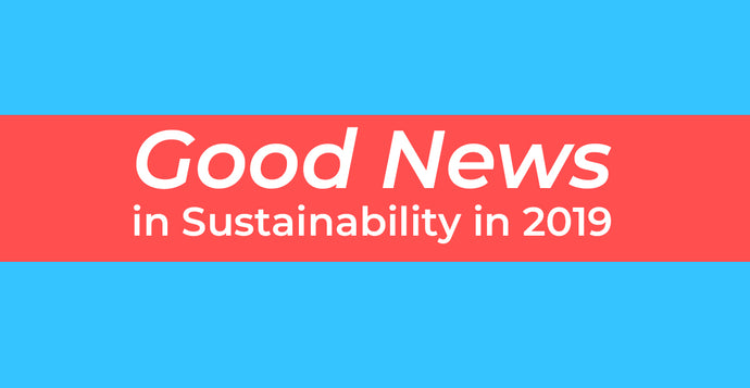 Good News in Sustainability in 2019