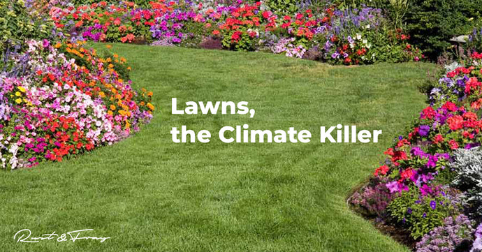 Lawns, the Climate Killer