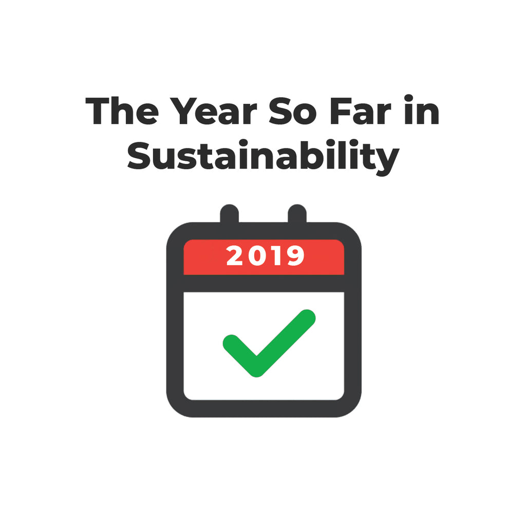 The Year So Far in Sustainability