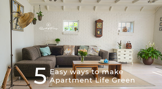5 Easy Ways to Make Apartment Life Green