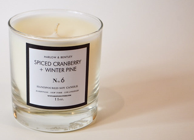 SPICED CRANBERRY + WINTER PINE SOY CANDLE