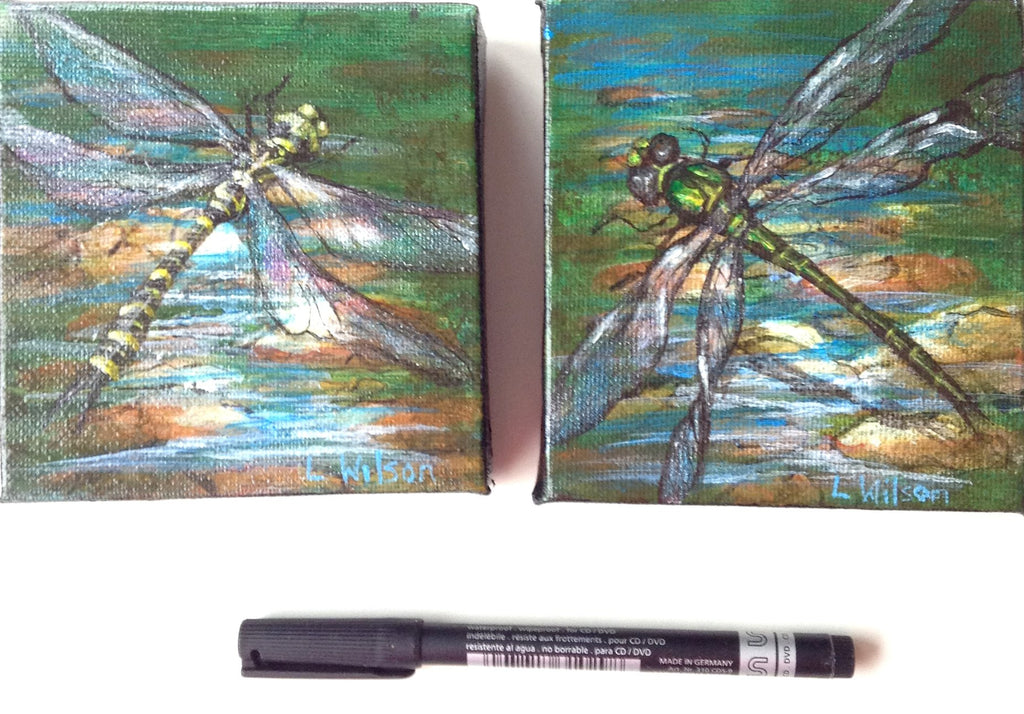 Painting Dragonflies. Step by Step Instruction Blog.