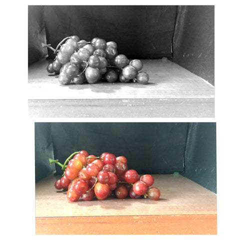 Grape photo used for a painting of a still life. Art Blog by Goldstarwork, Artist Laura Wilson