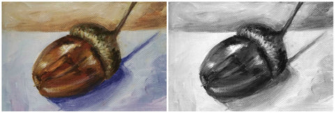 compare acorn painting black and white withe colour to explain tones