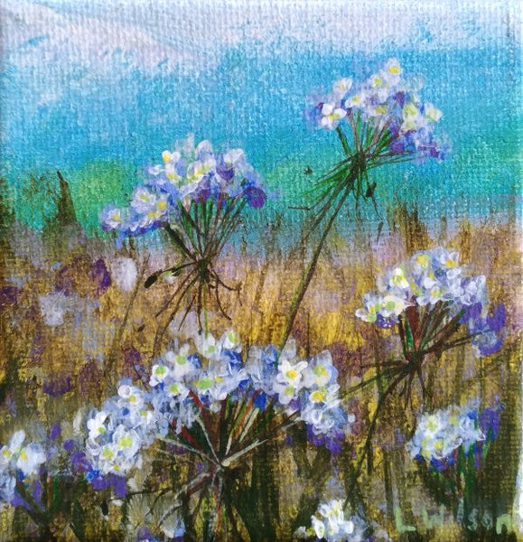 small acrylic floral painting, Queens Anna lace. miniature painting by Goldstarwork, Artist Laura Wilson