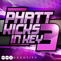 Phatt Kicks In Key 3