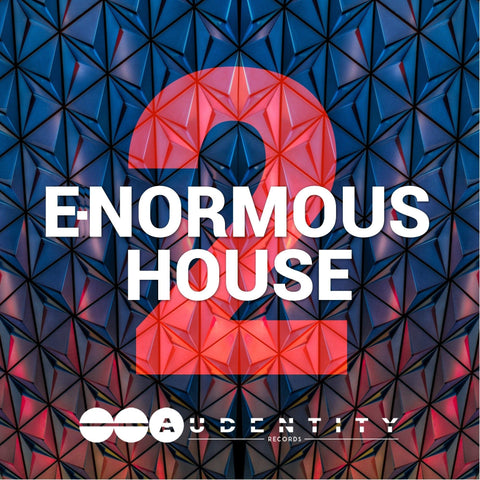 E-Normous House 2 - Audentity Records | Samplestore