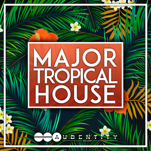 audentity major tropical house