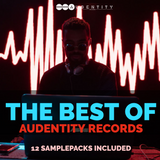 The Best Of Audentity Records