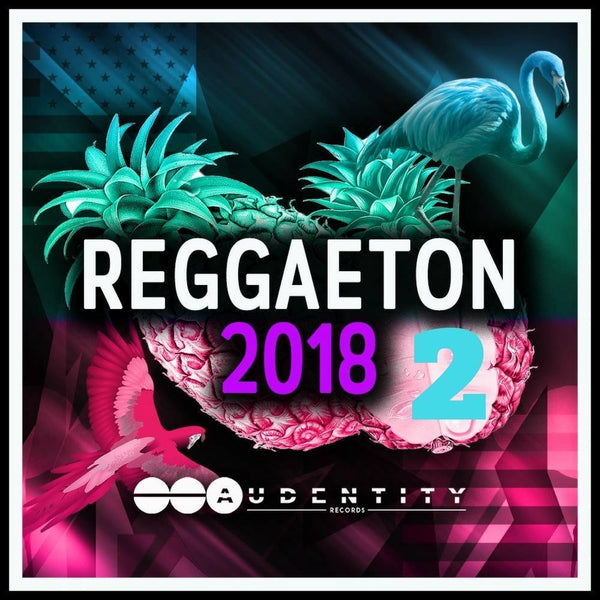 Reggaeton 2018 Vol 2 Samplepack - Audentity Records | Samplestore