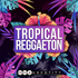 Tropical Reggaeton - Audentity Records | Samplestore