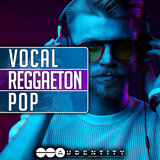 vocal reggaeton pop samplepack