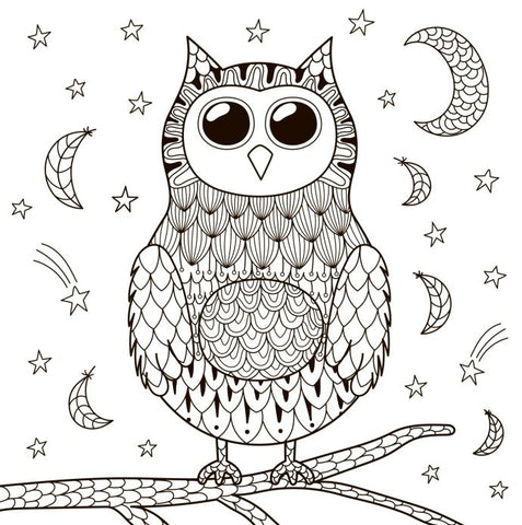 Owl #2 Coloring Poster