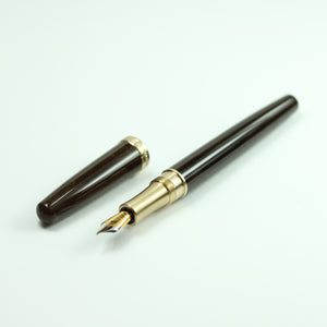Vintage Brown Fountain Pen with Brass Hardware
