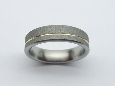 Titanium Wedding Band in Gray and Polished Gold