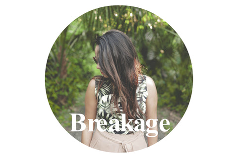 Haircare products for breakage and split ends