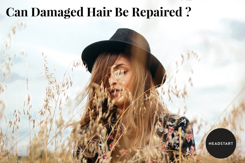 Can Damaged Hair be Repaired?
