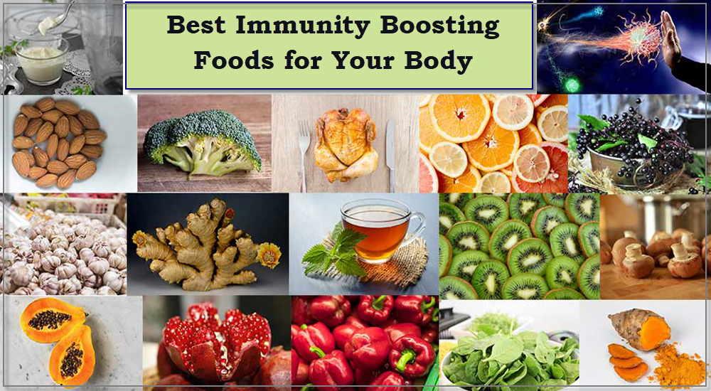 6 Best Immunity Boosting Foods for Your Body