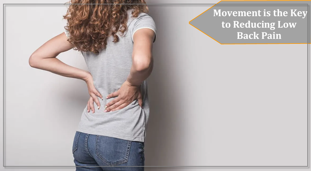 Low Back Pain: Movement is the Key to Reducing Low Back Pain