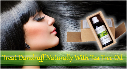 How to Treat Dandruff Using Tea Tree Oil