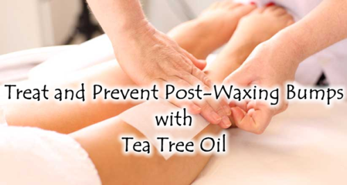 Tea Tree Oil is Great for Treating and Preventing Bumps After Waxing