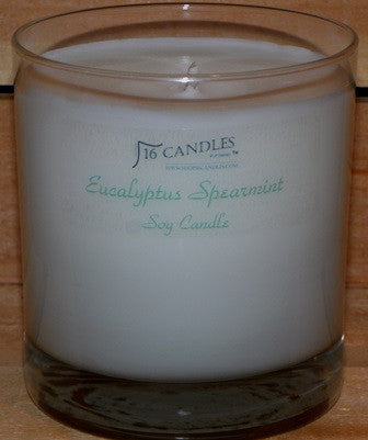 Eucalyptus Spearmint ~ Tumbler Glass Soy Candle