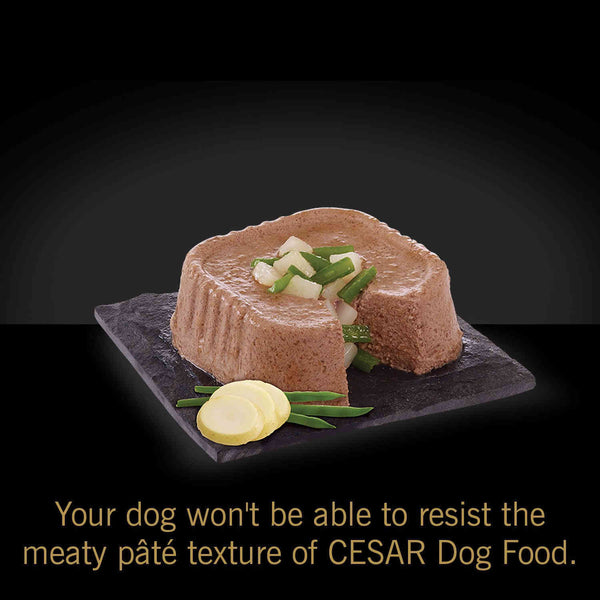 Cesar Trays Wet Dog Food