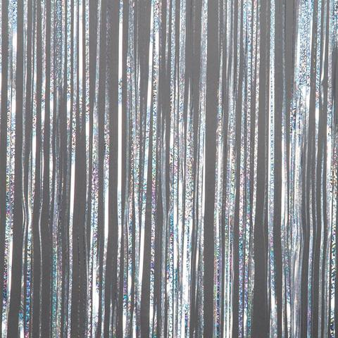 Foil Curtain Backdrop - Holographic