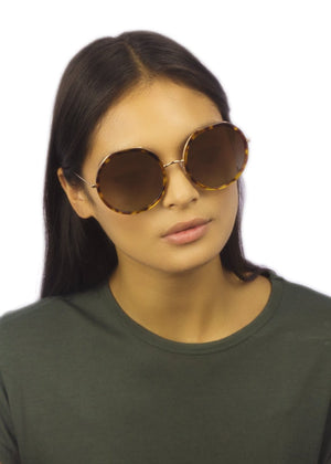 W1F SOHO II / HAVANA - Fashion Women's Sunglasses Sienna Alexander London