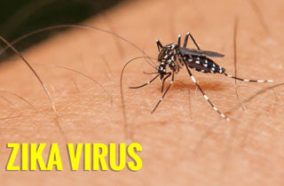 Quick facts about Zika, Malaria and Dengue virus Part 1 (3)