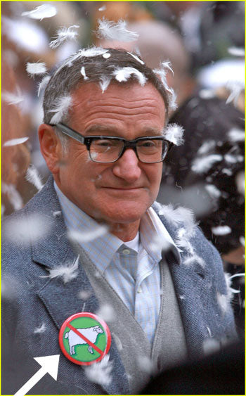 robin-williams-button