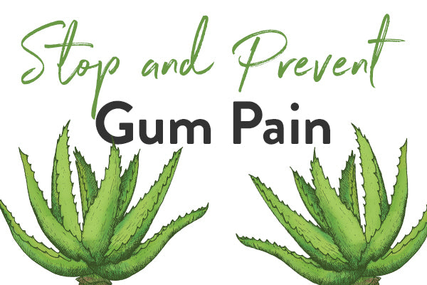 Must Haves to Stop & Prevent Painful Gums