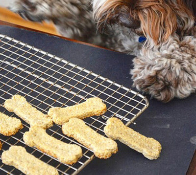 Vegan Dog Treat Recipe