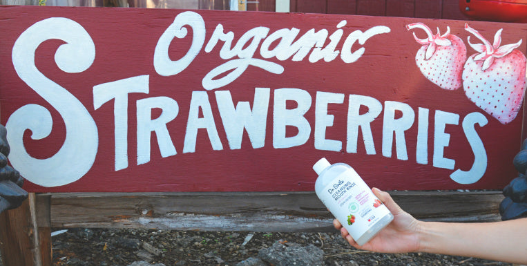 Organic Strawberry Extract Flavored Toothpaste and Mouthwash