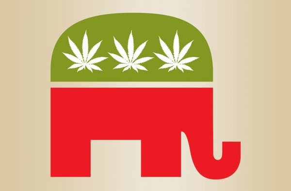 Why President Trump and the Republican Party Should Legalize Marijuana