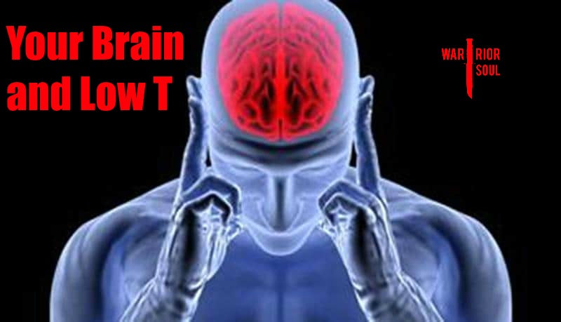 Your Brain and Low T | How Brain Inflammation Causes Low