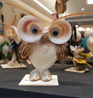 SSC007 Sea Shell Owl - Trinkets & Things Handmade with Aloha