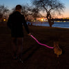 nitey leash lighted dog leash pink