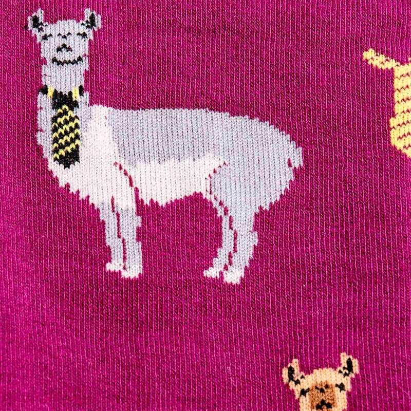 Sock It To Me - Llama Drama Knee High Socks | Women's - Knock Your Socks Off