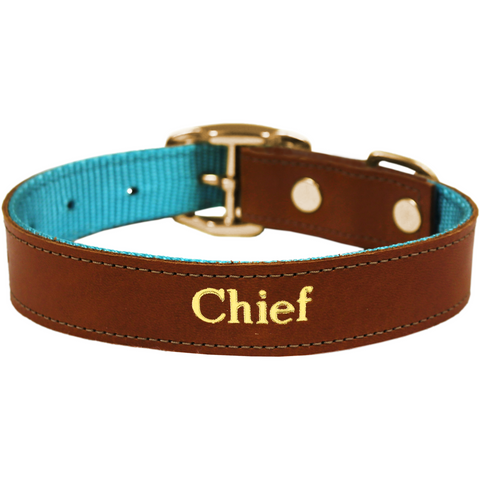 Jon Hart Medium Pet Collar #692