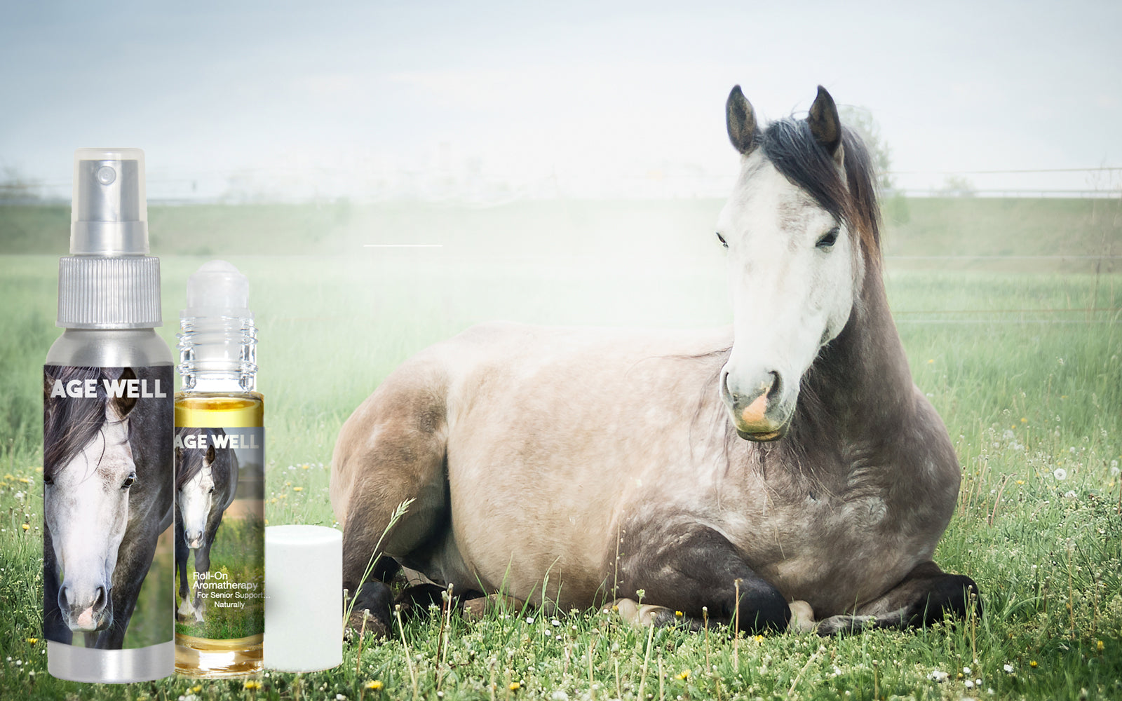 age well horse aromatherapy