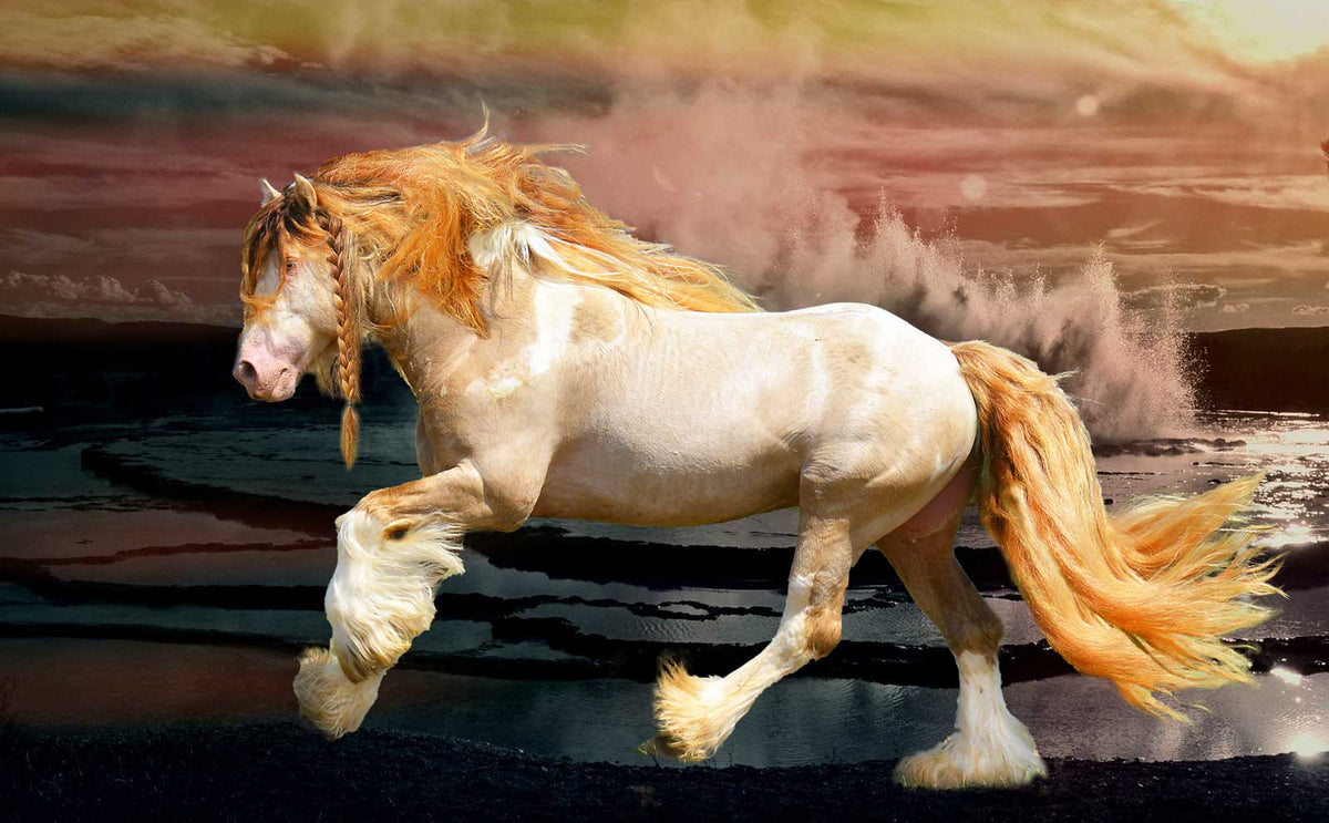 Golden Vanner Horse