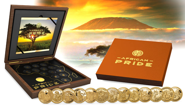 2019 African Pride 13 Nation 13 X .5 .9999 Proof Gold Coin Collection