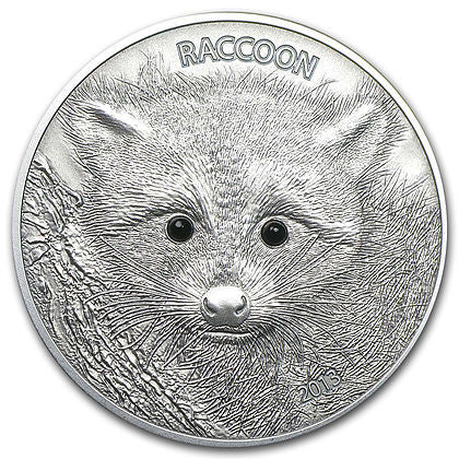 2013 Vanuatu 1 Ounce Forest Animals Raccoon High Relief Silver Coin - Art in Coins