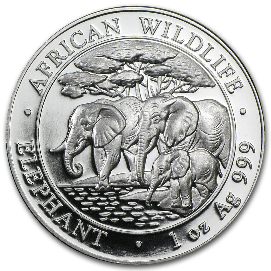 2013 Somalia 1 Ounce African Elephant Silver Coin - Art in Coins