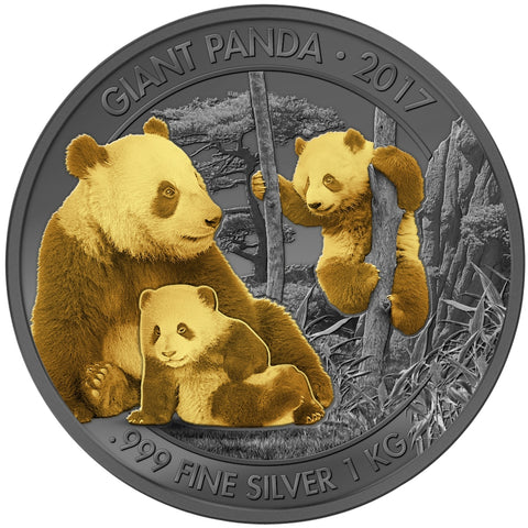2017 Cameroon 1 Kilogram Giant Pandas Golden Enigma Premium Gold and Ruthenium Silver Coin - Art in Coins