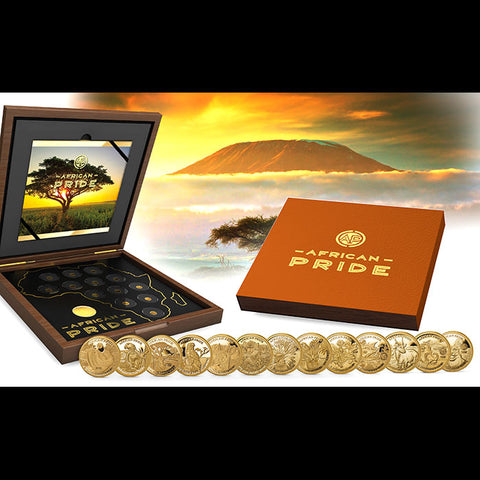 2019 African Pride 13 Nation 13 X 1/2 Gram .9999 Proof Gold Coin Collection