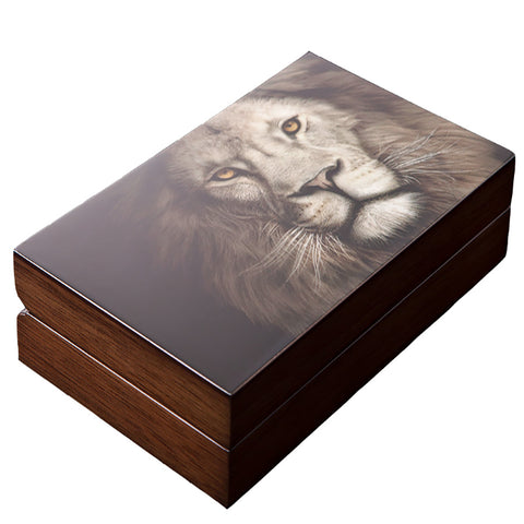 2019 South African Mint Big 5 Lion Proof Set