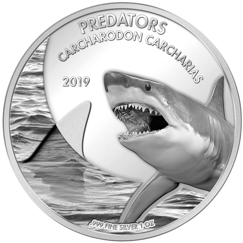 2019 Democratic Congo 1 Ounce Predators Great White Shark (Carcharodon Charcharias) Silver Coin